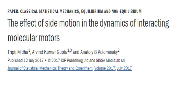 The effect of side motion in the dynamics of interacting molecular motors.